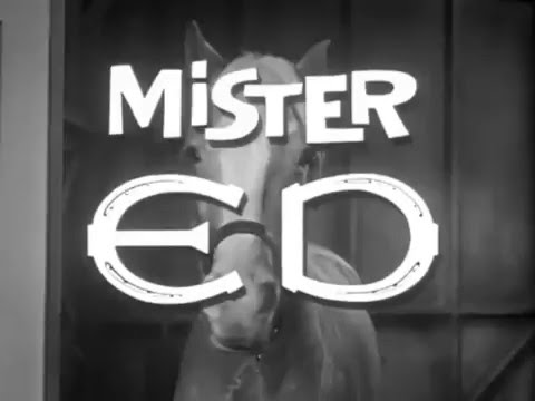 Mister Ed 1961 - 1966 Opening and Closing Theme (With Snippet)
