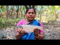 Fish with Tomato Cooking Recipe: Bengali Style Fish & Tomato Curry in Village | Village Food Factory