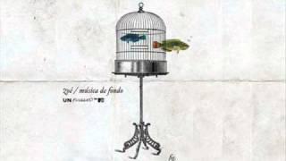 8. Paula - Zoé (mtv unplugged) musica de fondo.wmv