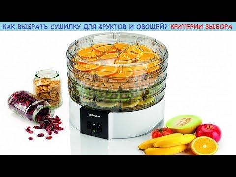 Как выбрать сушилку (дегидратор) для фруктов и овощей. Функционал, виды и критерии выбора