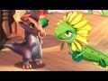 Получил дракона Подсолнуха и Минотавра!! Легенды Дракономании прохождение l Dragon Mania Legends 5