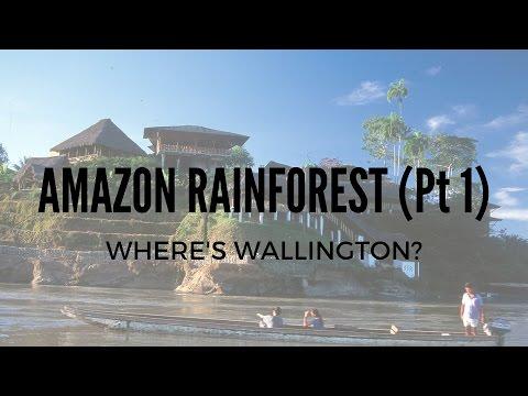 TRAVELING IN ECUADOR'S AMAZON RAINFOREST!