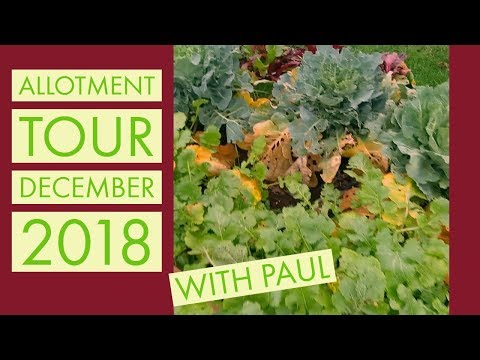 Allotment Tour With Paul - December 2018