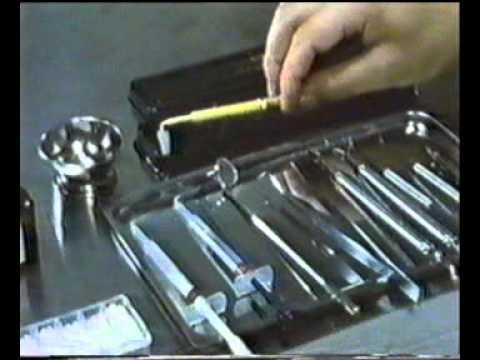 Материалы для пломбирования корневых каналов зубов в