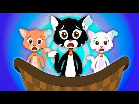 Három Kis Kiscicát | Macska Dalok | Gyerek Dalok Magyarul | Three Little Kittens | Kids Tv Hungary letöltés