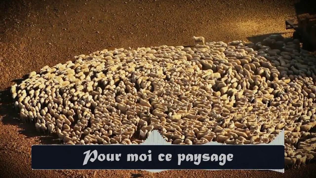 Lalgérie Mon Beau Pays Slimane Azem 4am Madjid Belekhal