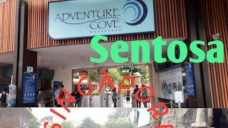 Adventure cove park Sentosa Singapore