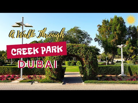 Creek park | Barbeque | Dubai Dolphinarium | Children's City| Dubai
