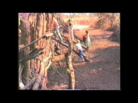 1987 Zimbabwe    Mana Pools National Park, VHS40/1, Rhino Transfert And Save, by HabariSalam