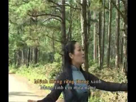 Tinh ca Mang Den
