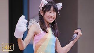 柏結菜 - いぬねこ。青春真っ盛り - ( わーすた )  JC&JKアイドルソロSP  @ 渋谷アイドル劇場 2019,5,11