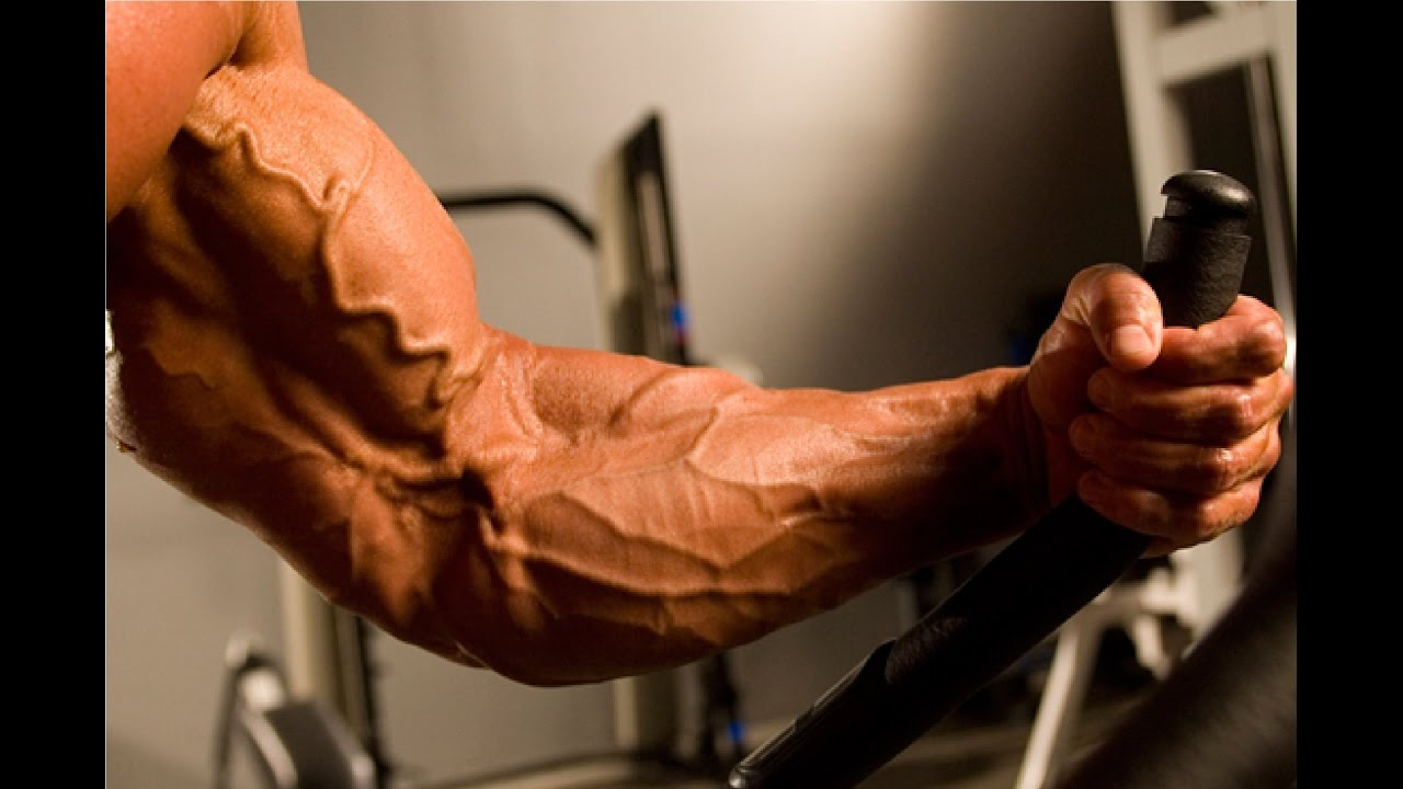 how to make your veins show