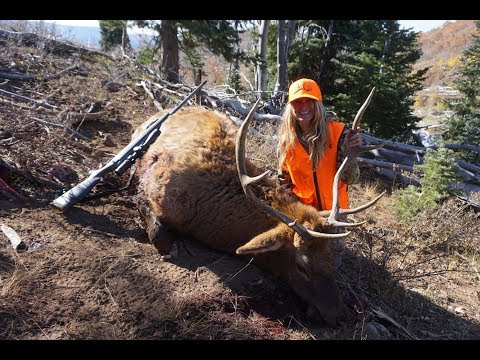 My First Bull Elk! Rifle Hunting With Eric Chesser