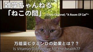 物知り猫のアビーがうんちくを語る。第3回は「万能薬ビタミンDの効果」...