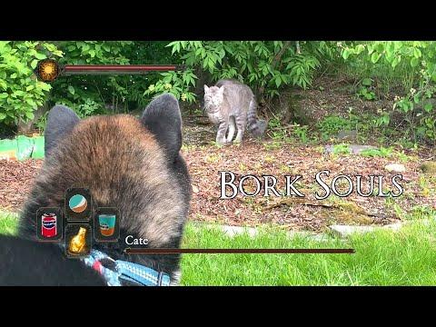 Cate in Doggo Territory