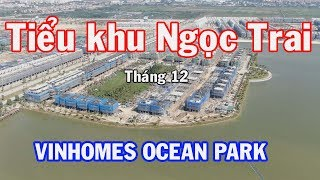 Review tiểu khu ngọc trai Vinhomes Ocean Park tháng 12