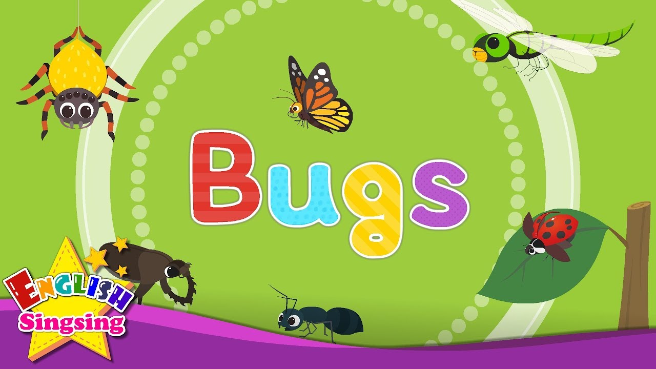 Download Kids vocabulary - Bugs - Learn English for kids - English educational video