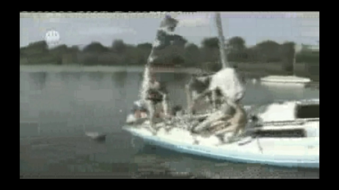 Funny Ass Fails Watch Now LMFAO