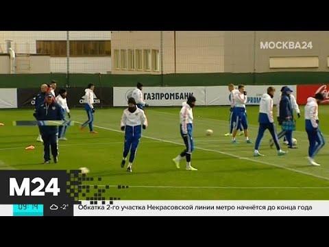 Соперниками России по групповому этапу стали Бельгия, Финляндия и Дания - Москва 24