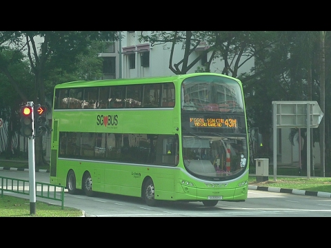 Go-Ahead Singapore Bus Service 43M, SG5080Z