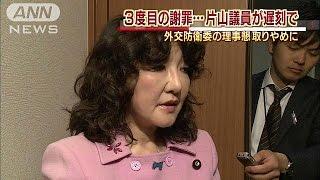 3度目の謝罪となりました。 参議院・片山外交防衛委員長:「申し訳ない...