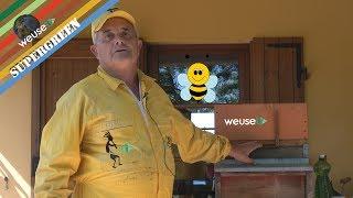 5 of 10 - Apicoltura - Un modo innovativo ed ingegnoso per affrontare la sciamatura delle api