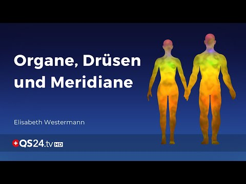 Organe, Drüsen und Meridiane | Der Sinn des Lebens | QS24 Gesundheitsfernsehen