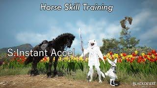 BDO - Horse Skill Training: S:Instant Accel
