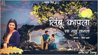 Limbu kapla Ras Galu Lagala   Shiva Mhatre   Dj mix song 2019   Haldi special song   Dhavla geet