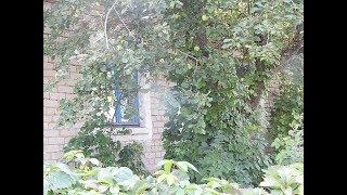 ✅Выбор дома в деревне!(15)#Дом в деревне!+просмотр участка ИЖС!