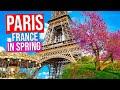 PARIS - FRANCE City Tour [Spring] | Paris in Springtime