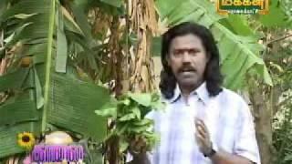Kaalaivanakkam-Mooligai maruththuvam.wmv