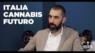 Italia, Cannabis e Futuro: Intervista al sen. Matteo Mantero