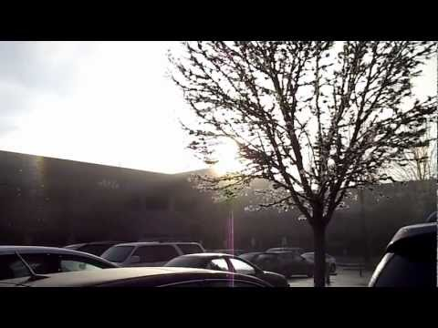 Today's Weather Surprise: Ice Fog Creates Glittery Shower in the Sunshine