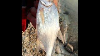 Тайган Крим: Рибалка на водоймі під захід сонця