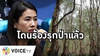 Overview - เอ๋ปารีณาโดนร้องรุกป่า 1,700 ไร่ รัฐมนตรีสั่งอธิบดีสอบด่วน ส่อจบแบบเขายายเที่ยง