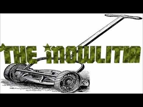 The Mowlitia Echo SRM 225 Carb problems part 1