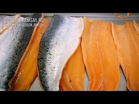 Как поймать лосося и закоптить: мастер -класс от Гордона Рамзи