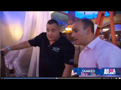 Marietta Fish Market Is Going To Be On Tanked!