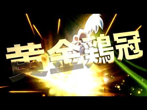 【東欧のもこう】奇跡を呼ぶ『黄金のトサカ』、爆誕!!!!【マリオカート8DX】