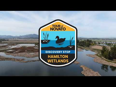 Hamilton Wetlands Discovery Stop