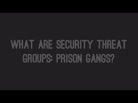 2016_Security Threat Groups; Prison Gangs: Q+A
