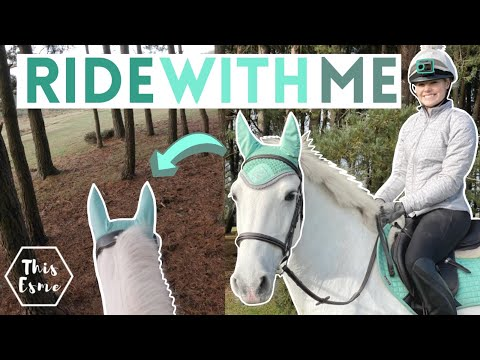 GoPro Ride A Horse In The Forest With Me! Groom Tack Up And Get Ready With Me | This Esme