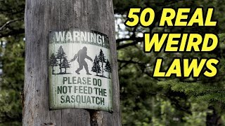 Bizarre Laws in All 50 States | America Uncovered