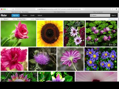 Using Flickr to Find Free Licensed Photos