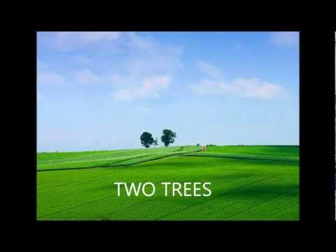 Two Trees - Ann Reed