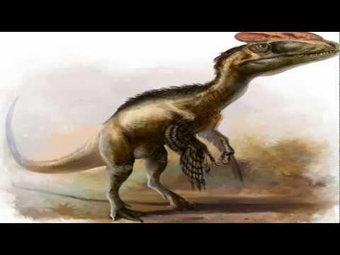 Ancient Reptile Four: Guanlong Wukaii / Proceratosaur - Dinosaur.