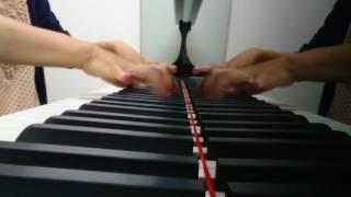 発表会の練習でグランドピアノをレンタルした時に、息抜きに撮ってみま...