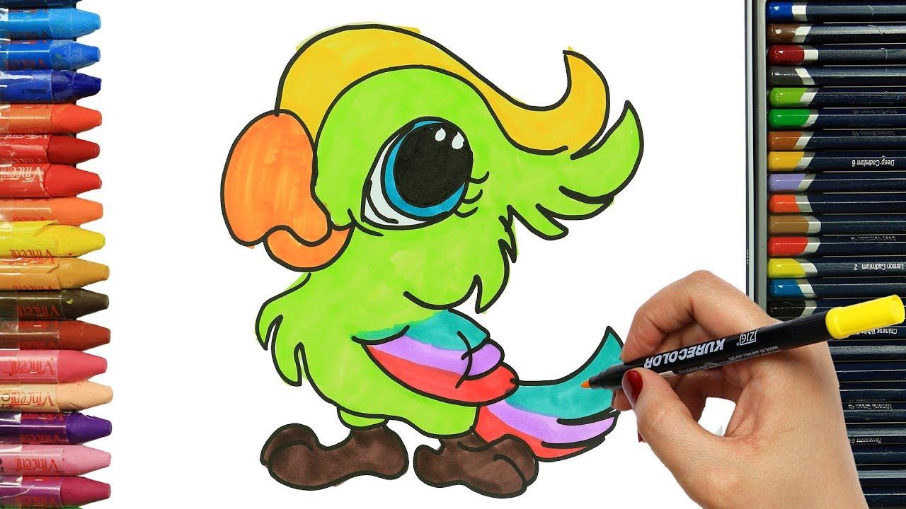Cómo Dibujar Y Colorear Loro Dibujos Para Niños