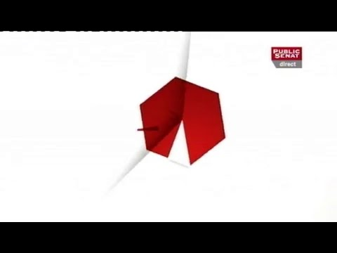 Invités: Yves Pozzo Di Borgo et Virginie Klès - Le 19H (24/04/2013)